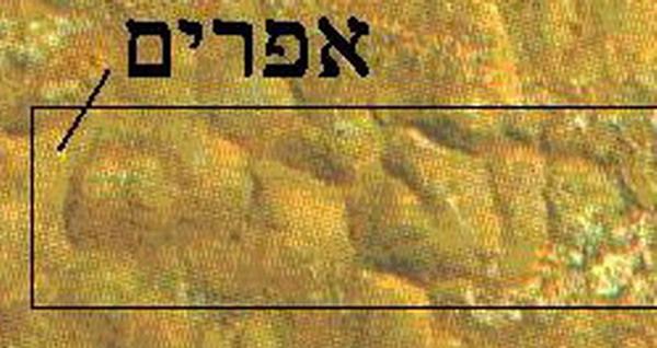 Torah study quotes quotation